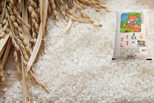 お米はアマゾンで買え!お米の新常識