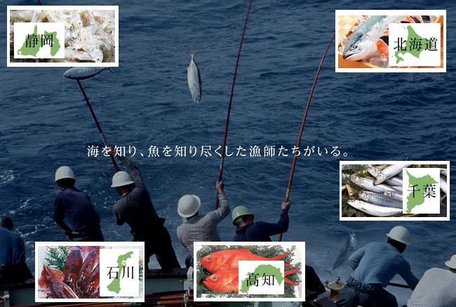 PRIDE FISH魚離れ対策